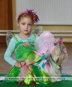 Krasavec_noveho_roku_087